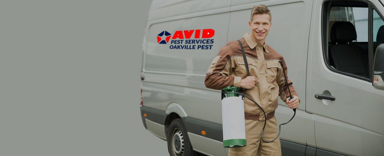 Avid Pest Service Oakville Pest